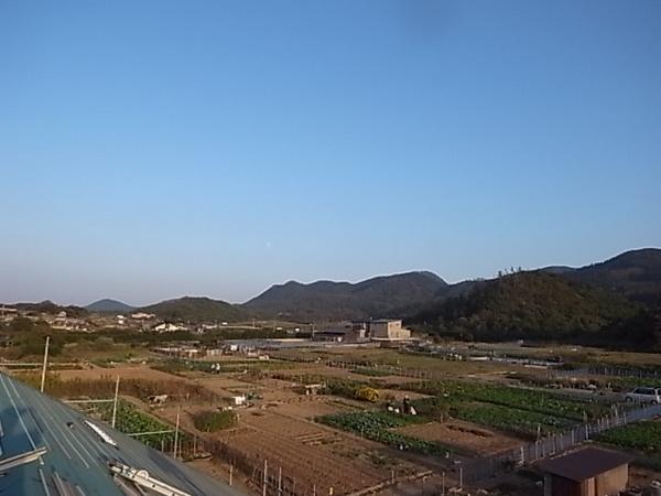 R0011042.JPG